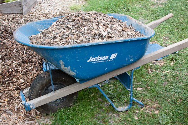wood_chips-005