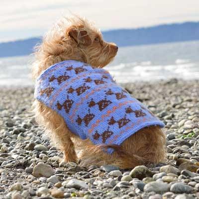 Robot Dog Sweater