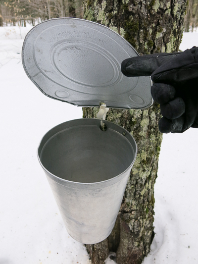 vermont_sugaring_season-004